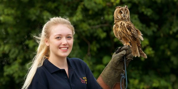 Keeper&Owl10-21jpg