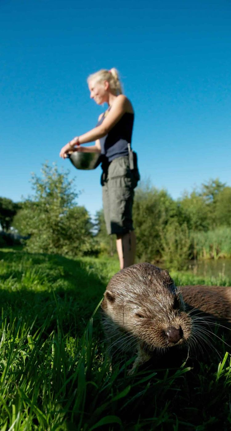 New Website - Keepers - Izzy Otter Talk Pt 07-18