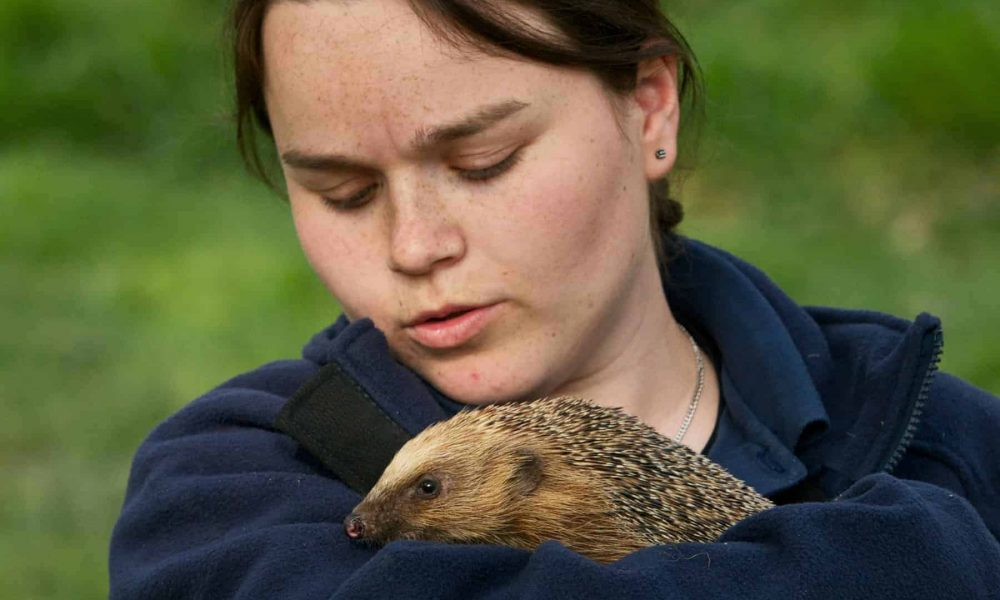 New Website - Keepers - Meg and Hedgehog 07-18