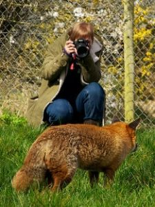 photo-wshop-bobbs-fox03-15